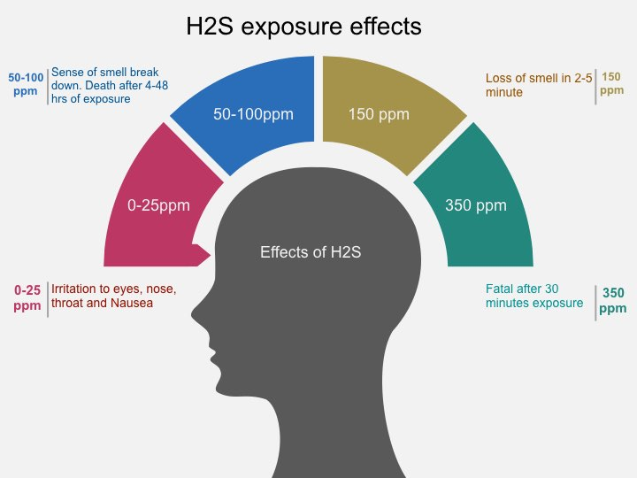 H2S exposure effect